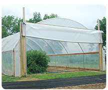 HIGH TUNNELS DELIVER FOR GOOD MANAGERS
